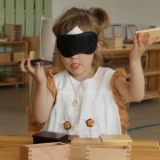 Montessori Way Of Life
