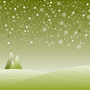 f1a23517_green+christmas+tree+options