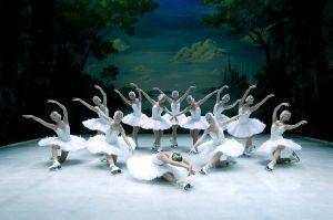 Swan_Lake_02