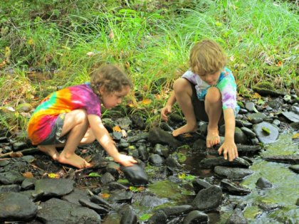 summer-nature-camps-in-the-westchester-area-best-camps-for-playing-and-learning-in-the-great-outdoor