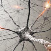 epilepsy-seminar_aftodioikisi.gr_1