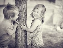 follow-your-tree