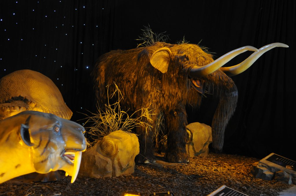 Mammoth and Smilodon