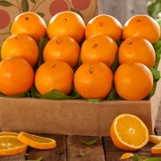 1n-navel-oranges-for-sale-online_04