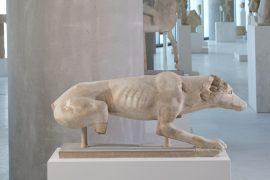 Καλοκαίρι παρέα με τα ζώα του Μουσείου Ακρόπολης
