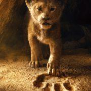 Ο Βασιλιάς των Λιονταριών Live action