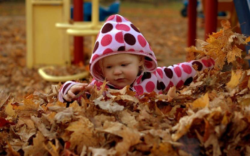 posterhouzz-cute-baby-playing-with-leaves-pb71-medium-original-imae6afasgfv42gz