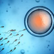 sperm-health