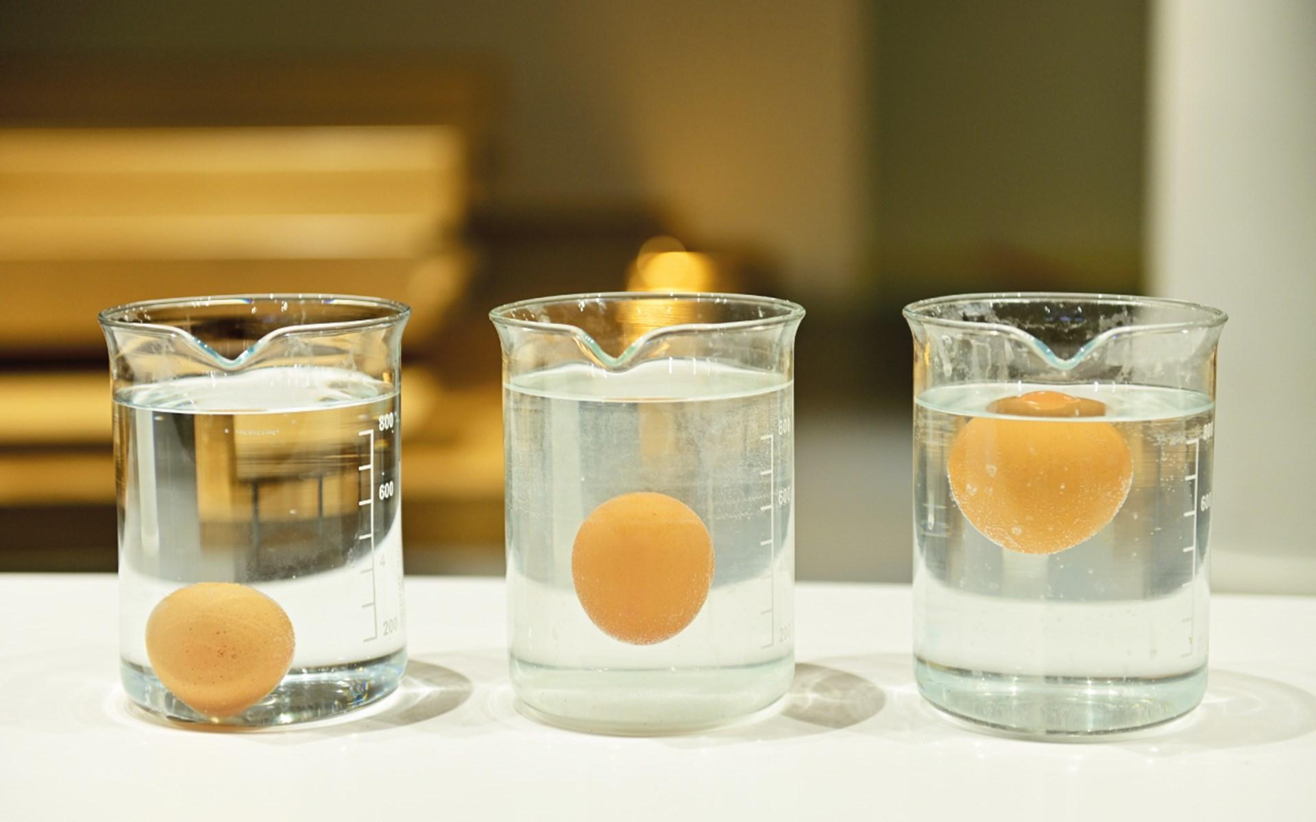eggs-1280x800px